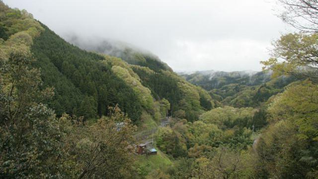 2016年10月29日(土)秋の里山にある山野草(薬草)の見分け方・食べ方ワークショップ
